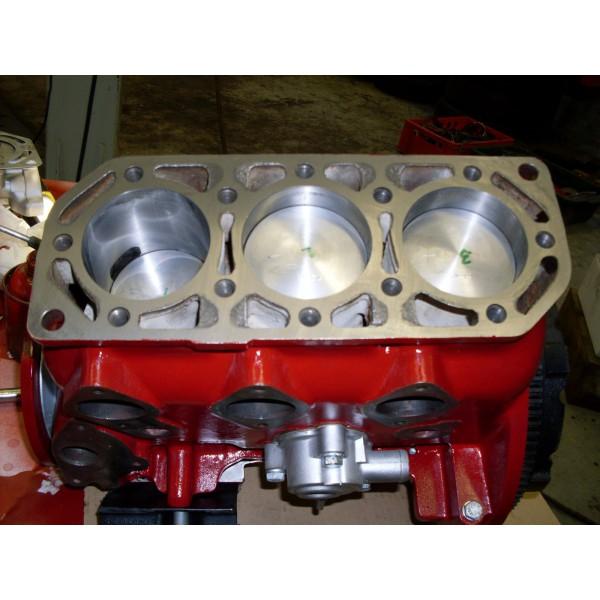 Gereviseerde 2T 850cc Saab Sport/Monte Carlo motor